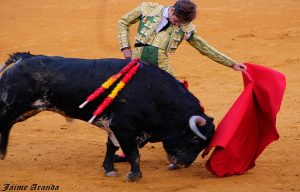 I Circuito Novilladas Andalucia