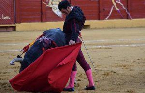 Morenito de Aranda en Estepona