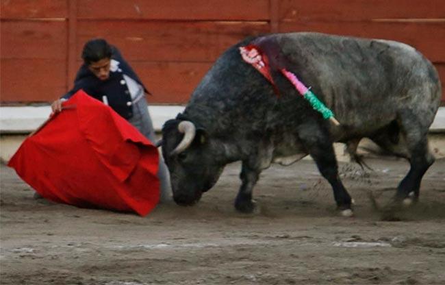 Sergio Flores y Luis David triunfan en Apizaco