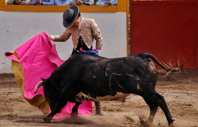 Tepetzala triunfa en el concurso de ganaderías tlxcaltecas