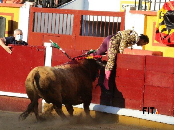 Cogida de Antonio Ferrera en Badajoz