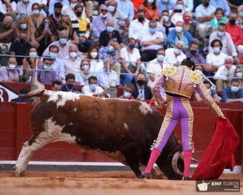 Morante, El Juli y Alejandro Marcos en Salamanca