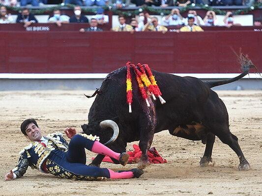 López Simón cornada interna