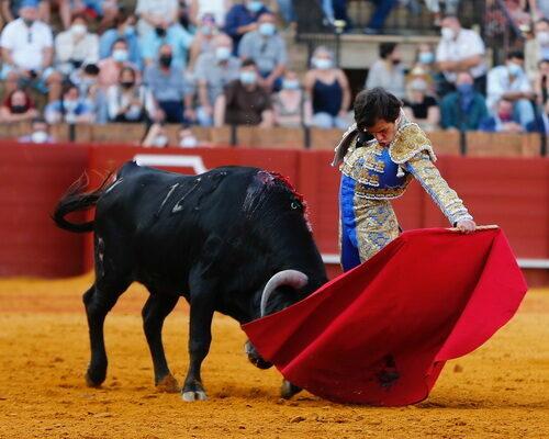 Novillada sin caballos en Sevilla