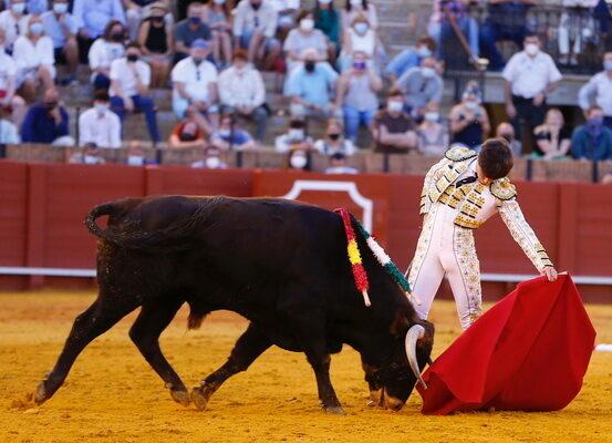 Marco Linares en Sevilla